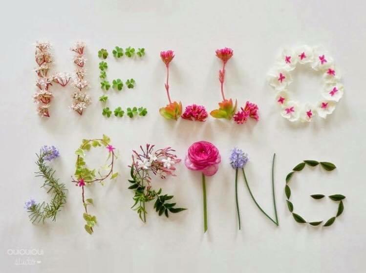 [Liebling der Woche] der Frühling ist da es ist Zeit für Shomei Organic Skincare